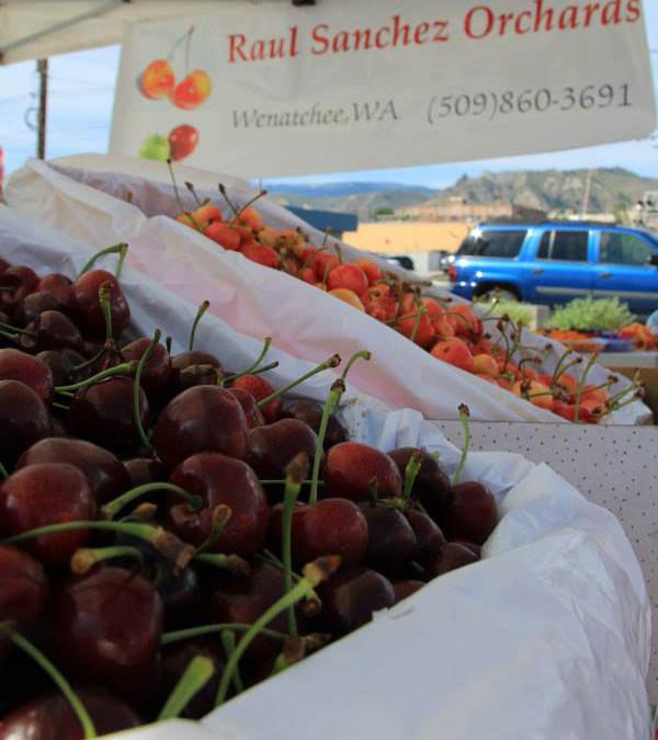 Raul Sanchez Orchards
