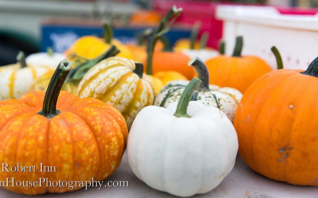 Carved Pumpkin Contest!