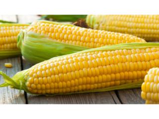 Fresh Sweet Corn Dip